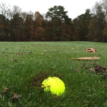 Vision_UVX3_Golfball_eingegraben