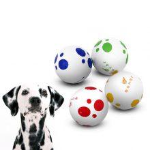 Vision Goker Dalmatian 4 Golfbälle einzeln Hund