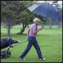 Golfschirme